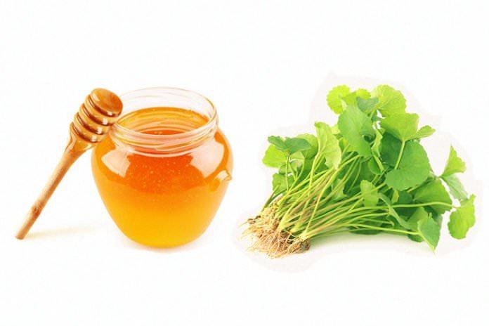 Trị nám bằng rau má, mật ong và chanh